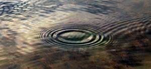 ronds dans l'eau
